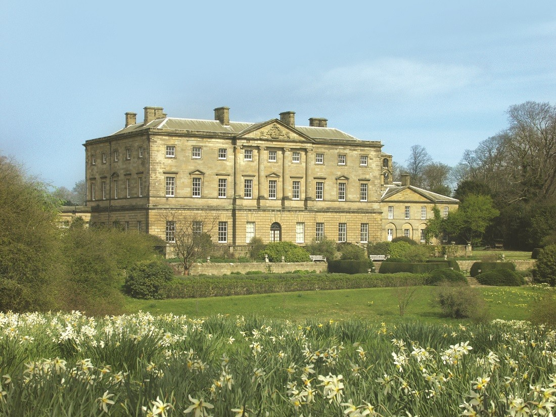 Daffodils growing in front of Howick Hall in Alnwick, Northumberland, north-England. Image credited to VisitEngland, VisitNorthumberland.