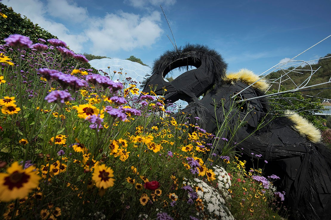Giant bee at Eden Project, Cornwall