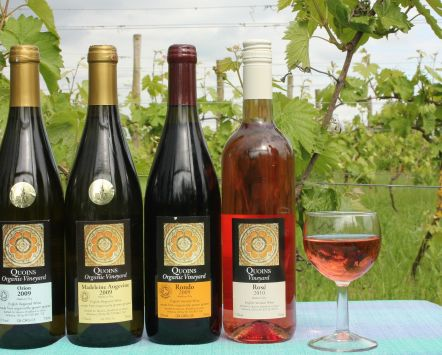 Organic wines produced by Quoins Organic Vineyard