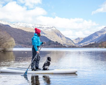 Woman and dog on a paddle-board, Snowdonia, Wales.