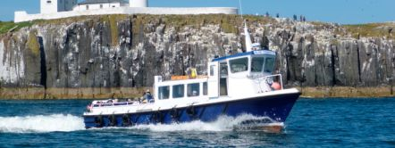 Puffin spotting boat trip on the Farne Islands in Northumberland. Billy Shiel's Boat Trips