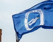 City flag of Brighton & Hove with white seagull on blue ground flying at Hove Lawns Seafront, Brighton, East Sussex.