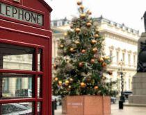 weihnachtsbaum in London mit Telefonzelle im Vordergrund