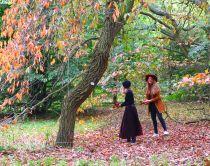 Kew Gardens en automne