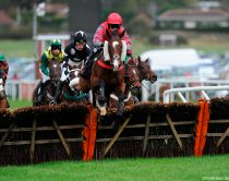 Racehorses and jockeys in action. A horse race, with runners and riders jumping over hurdles at a racecourse.