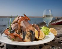 The Crab House Cafe. A beach restaurant in Wyke Regis famous for seafood. A platter of fresh seafood. A cooked lobster in the shell, with a garnish and cut lemons. Evening light over the sea. A glass of chilled white wine.