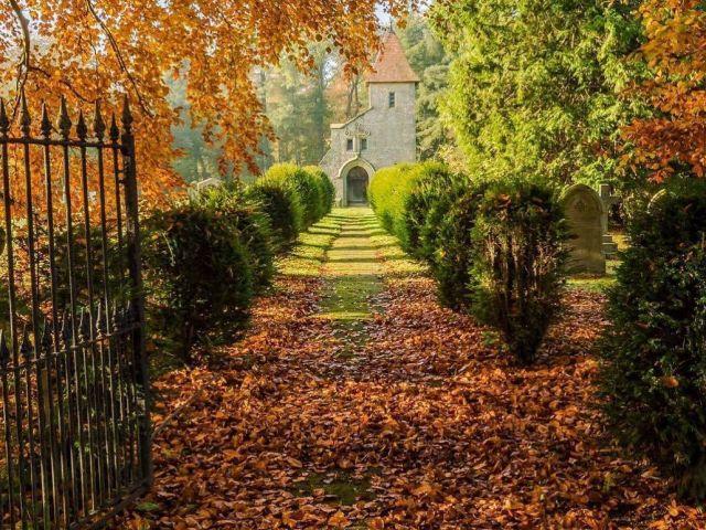 Instagram image of Britain in autumn