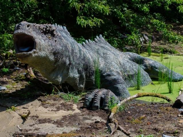 Dinosaur Park in Tenby