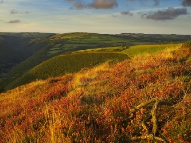 Heddon Valley in autumn colours, England