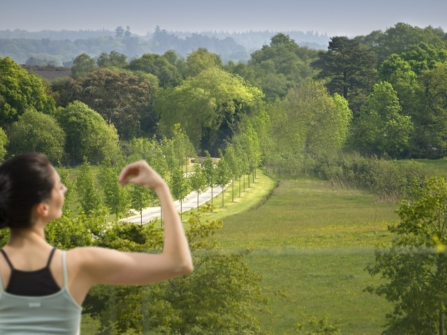 Wellbeing and yoga in the New Forest, Britain