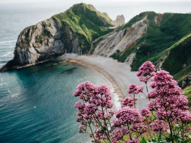 Man O'War Beach, Dorset