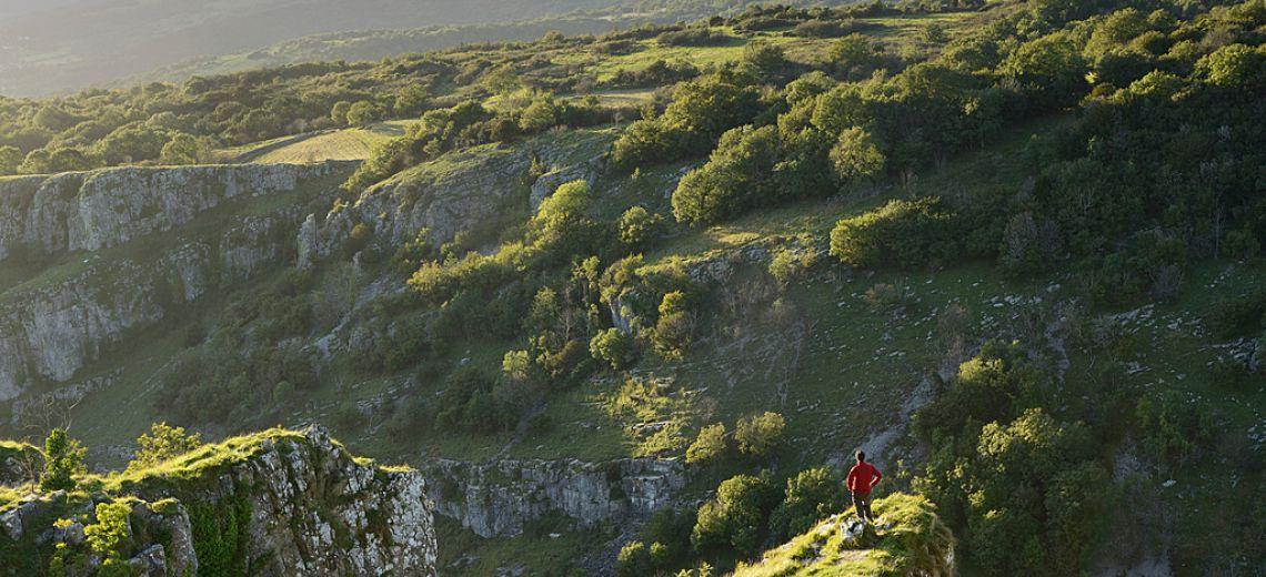 Naturaleza en estado puro en Somerset