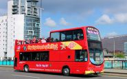 Belfast City Sightseeing Bus Tour