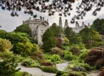 Gardens to visit in England