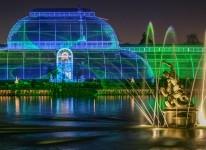 Kew Gardens light show