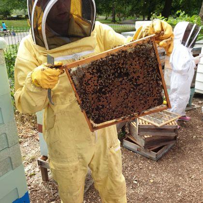 Beekeeper with honey
