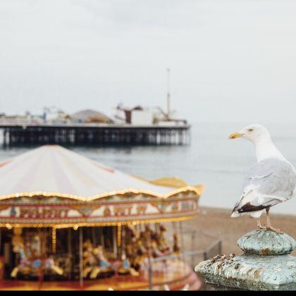 Am Strand von Brighton