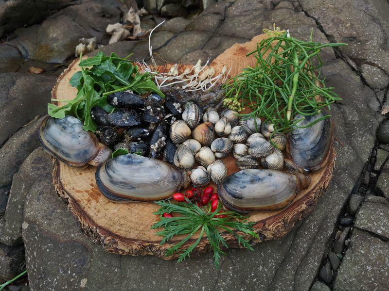 Coastal Cuisine - foraging; Credit: Craig Evans