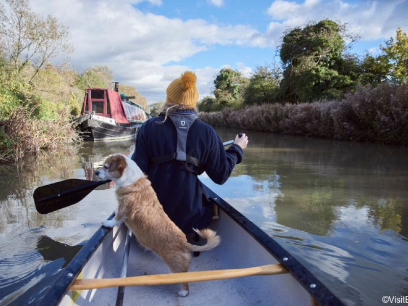 Rear view of woman and dog in a rowboat on the River Avon, Bradford-on-Avon, Wiltshire, England.