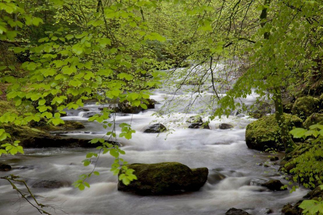 Ardgartan, Scotland