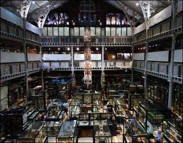 Pitt Rivers Museum by bazzadarambler