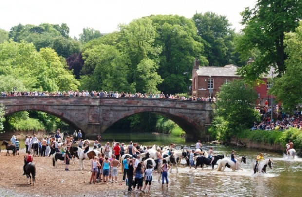Appleby Horse Fair - by Zoë Dawes