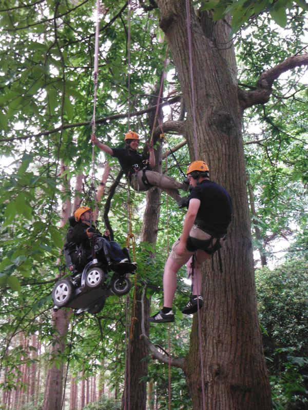 Martyn Sibley tree climbing accessible New Forest