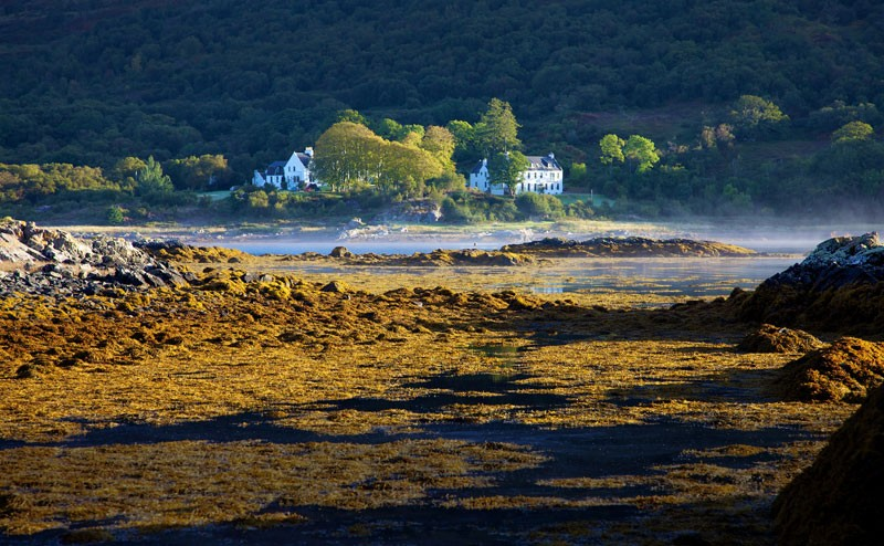 Kinloch Lodge in the morning mist